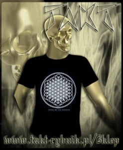 "Koszulka BRING ME THE HORIZON ""Sempiternal"" imp."
